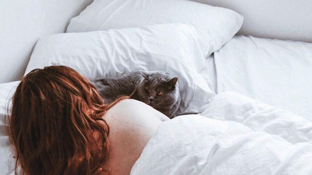 Добра идея ли е котето ви да спи в спалнята заедно с вас?