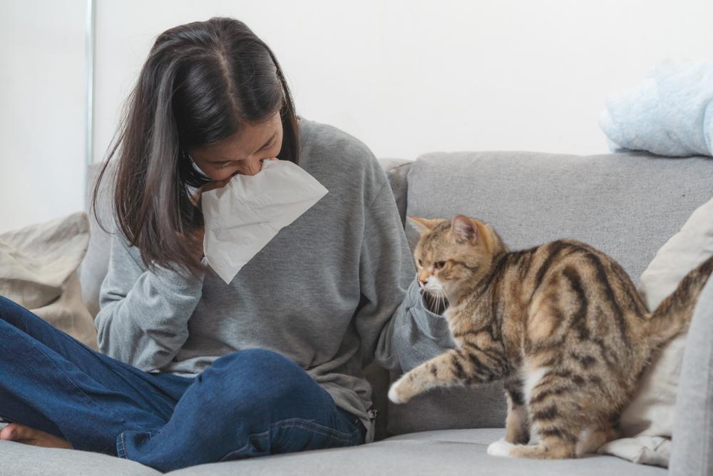 Жена, която има симптоми на алергия от котка, която е до нея